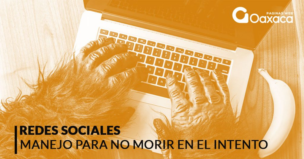 manejo rede sociales